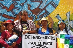 Mother Earth Law