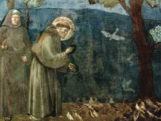 st_francispreachingtothebirds_giotto