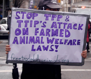TTIP_AW_Law_Cropped